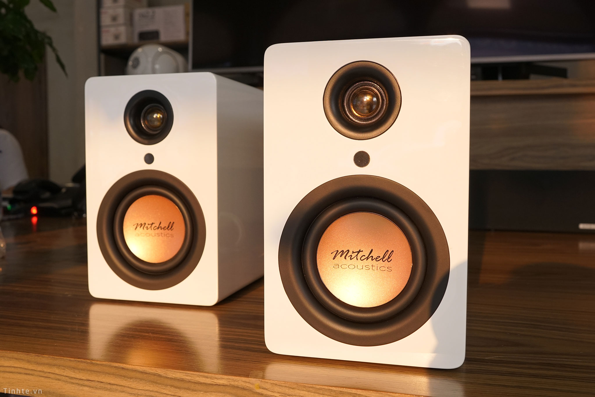 Trên tay loa true-wireless Mitchell Acoustics uStream One