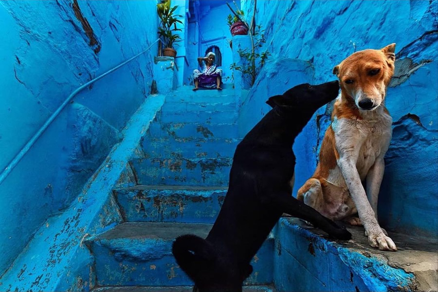 best_top_color_street_photography_compositions_15.jpg