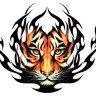 TigerNo.1